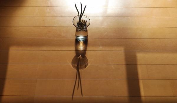 キントの花瓶